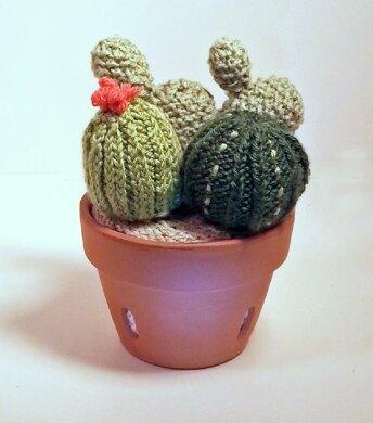 Knitted cactus garden knitting pattern