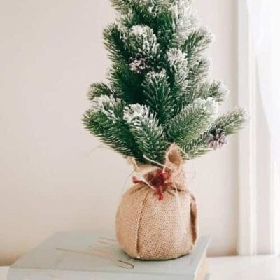 20 Ways to get Ready for Christmas Early