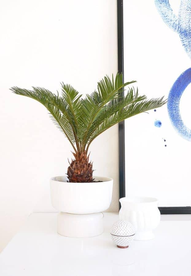 Mid Century planter hack