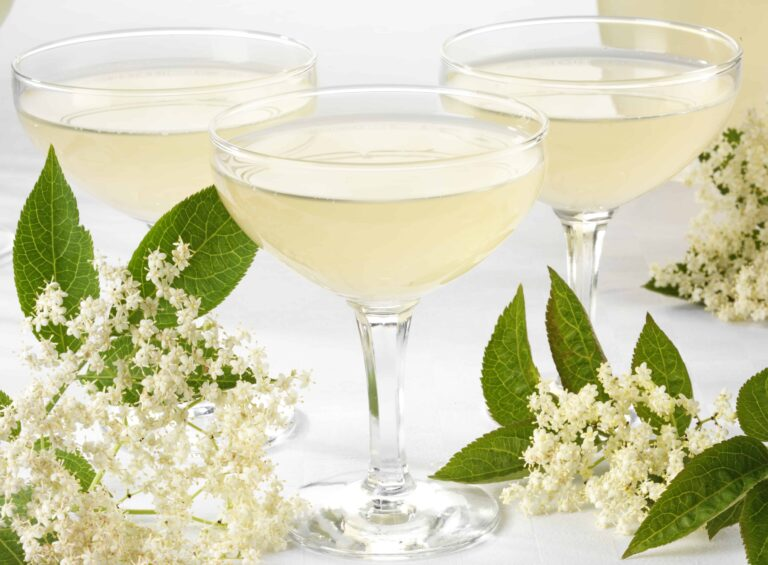 Make Delicious Elderflower Champagne