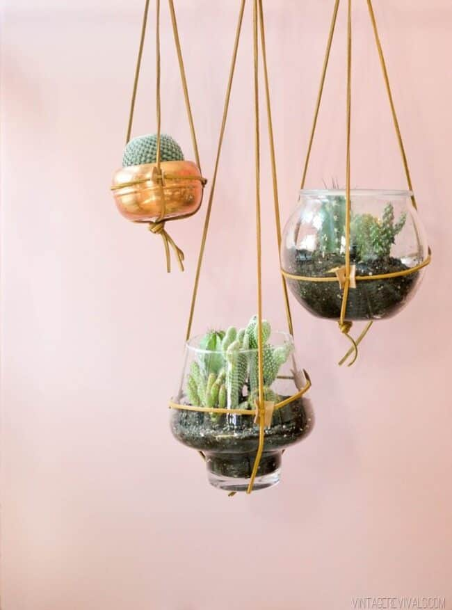 Leather strap hanging planters.